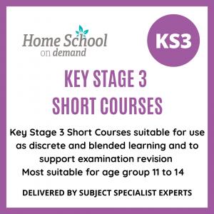 KS3 Short Courses
